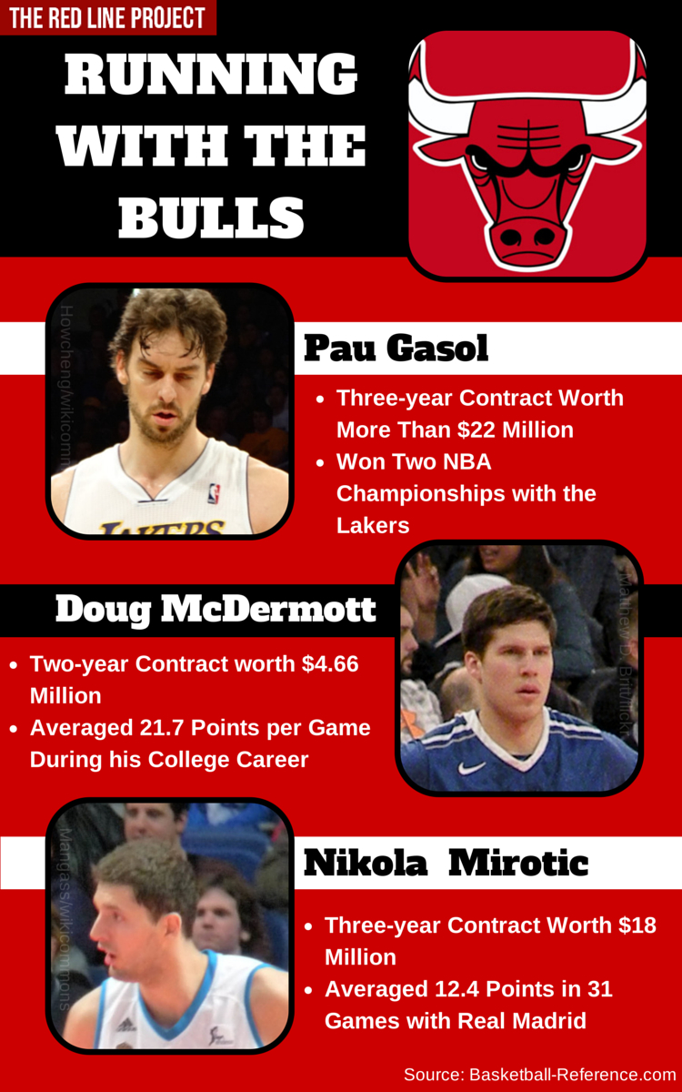 Chicago Bulls Infographic