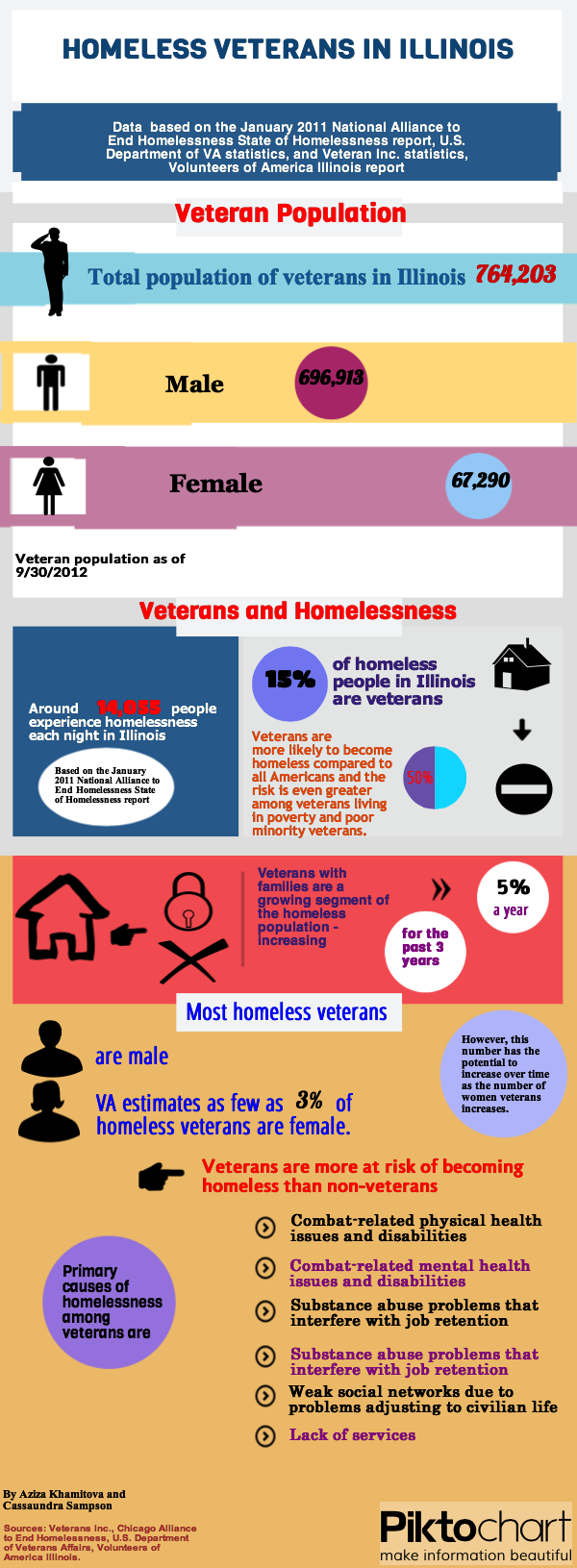 Illinois Veterans Graphic
